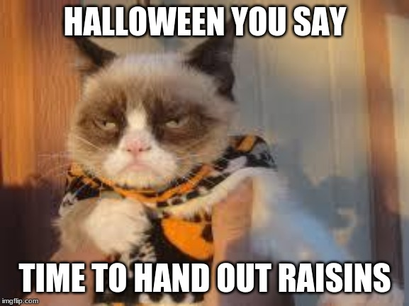 Happy Halloween! | HALLOWEEN YOU SAY TIME TO HAND OUT RAISINS | image tagged in memes,grumpy cat halloween,grumpy cat,happy halloween | made w/ Imgflip meme maker