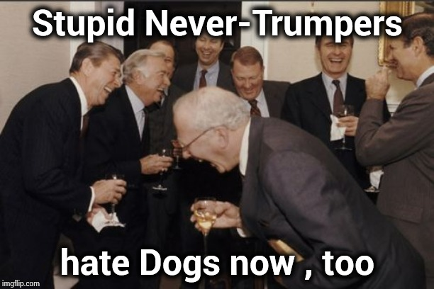 Do you want people to keep insulting your intelligence ? | Stupid Never-Trumpers hate Dogs now , too | image tagged in memes,laughing men in suits,silly,masochistic,laughter,x x everywhere | made w/ Imgflip meme maker
