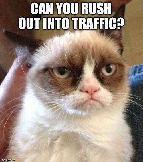 Grumpy Cat Reverse Meme | CAN YOU RUSH OUT INTO TRAFFIC? | image tagged in memes,grumpy cat reverse,grumpy cat | made w/ Imgflip meme maker