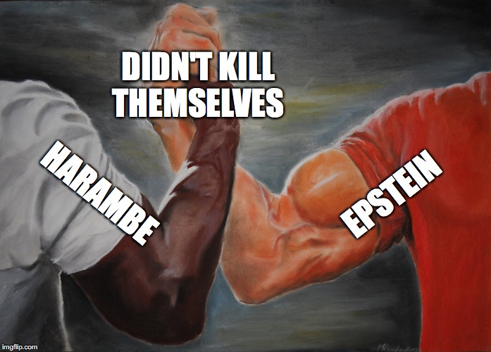 Epic Handshake |  DIDN'T KILL THEMSELVES; EPSTEIN; HARAMBE | image tagged in epic handshake | made w/ Imgflip meme maker