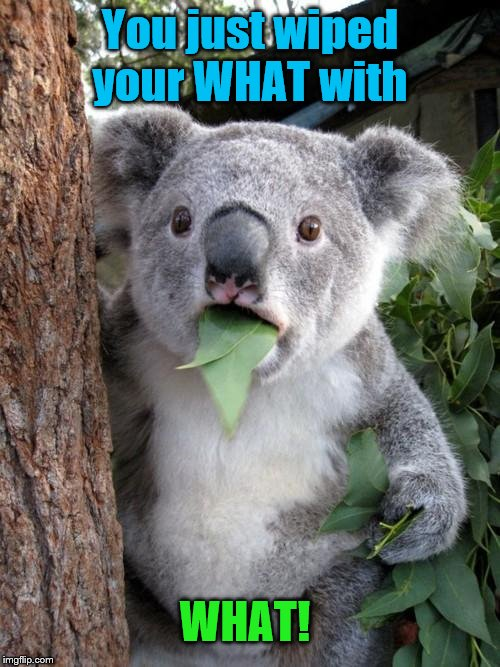 Surprised Koala |  You just wiped your WHAT with; WHAT! | image tagged in memes,surprised koala,fun | made w/ Imgflip meme maker