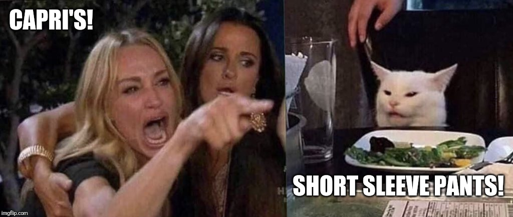 woman yelling at cat | CAPRI'S! SHORT SLEEVE PANTS! | image tagged in woman yelling at cat | made w/ Imgflip meme maker