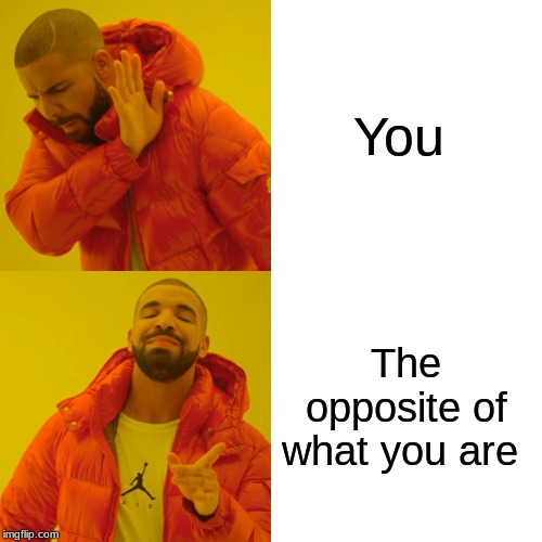 Drake Hotline Bling Meme | You The opposite of what you are | image tagged in memes,drake hotline bling | made w/ Imgflip meme maker