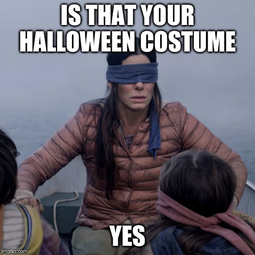 Bird Box |  IS THAT YOUR HALLOWEEN COSTUME; YES | image tagged in memes,bird box | made w/ Imgflip meme maker