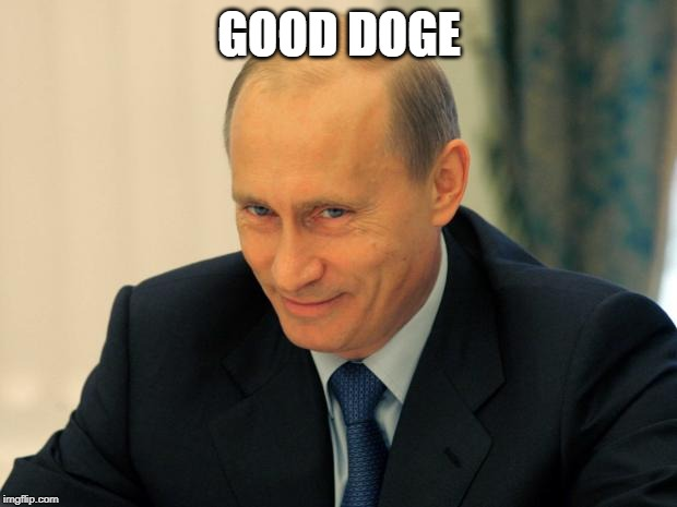 vladimir putin smiling | GOOD DOGE | image tagged in vladimir putin smiling | made w/ Imgflip meme maker