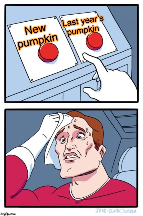 Two Buttons Meme | New pumpkin Last year's pumpkin | image tagged in memes,two buttons | made w/ Imgflip meme maker