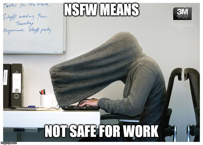 privacy | NSFW MEANS NOT SAFE FOR WORK | image tagged in privacy,nsfw,not safe for work | made w/ Imgflip meme maker