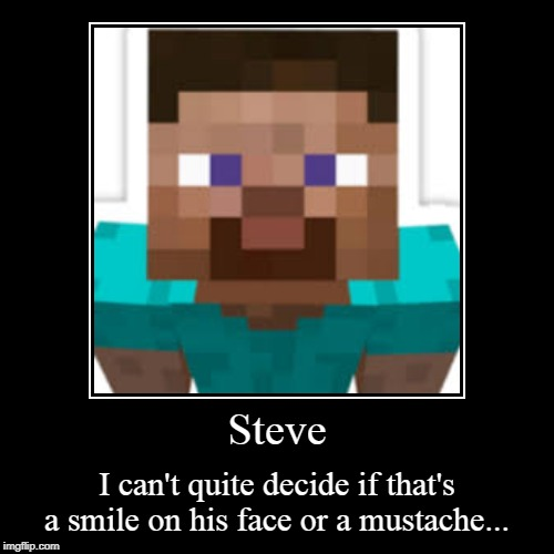 Steve | I can't quite decide if that's a smile on his face or a mustache... | image tagged in funny,demotivationals | made w/ Imgflip demotivational maker