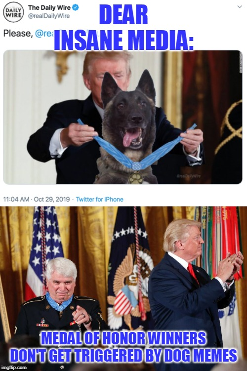 Trump has broken their brains |  DEAR INSANE MEDIA:; MEDAL OF HONOR WINNERS DON'T GET TRIGGERED BY DOG MEMES | image tagged in trump,dog,medal of honor,faked photo | made w/ Imgflip meme maker