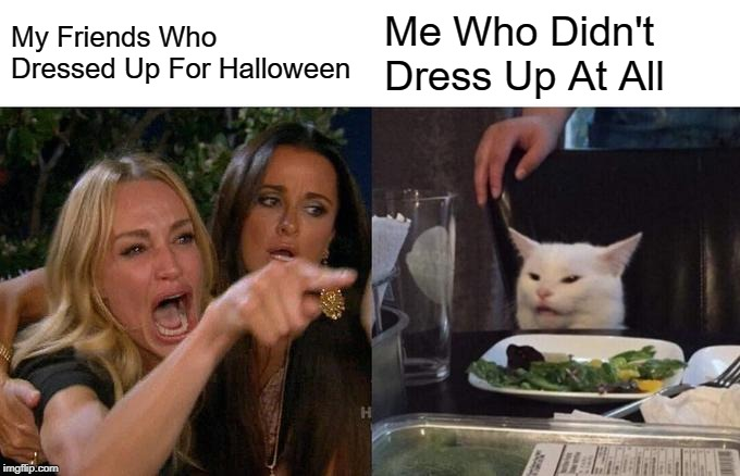 Woman Yelling At Cat |  My Friends Who Dressed Up For Halloween; Me Who Didn't Dress Up At All | image tagged in memes,woman yelling at a cat | made w/ Imgflip meme maker