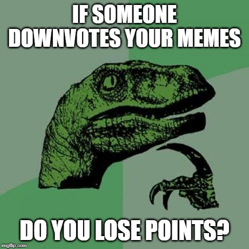 Philosoraptor | IF SOMEONE DOWNVOTES YOUR MEMES DO YOU LOSE POINTS? | image tagged in memes,philosoraptor | made w/ Imgflip meme maker