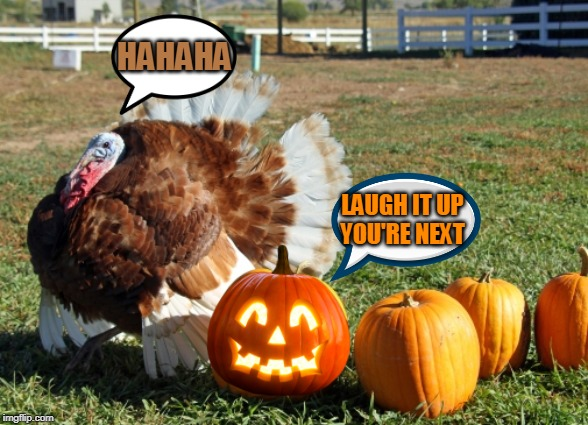 TURKEY CARVING NEXT! |  HAHAHA; LAUGH IT UP YOU'RE NEXT | image tagged in turkey,thanksgiving,halloween,jack-o-lanterns | made w/ Imgflip meme maker