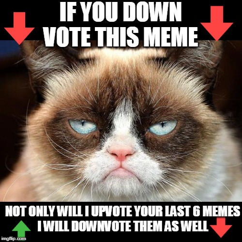 DONT FORGET I CAN SEE IF YOU VIEWED IT OR IF YOU UPVOTED OR DOWNVOTED |  IF YOU DOWN VOTE THIS MEME; NOT ONLY WILL I UPVOTE YOUR LAST 6 MEMES I WILL DOWNVOTE THEM AS WELL | image tagged in memes,grumpy cat not amused,grumpy cat,upvotes,downvotes | made w/ Imgflip meme maker