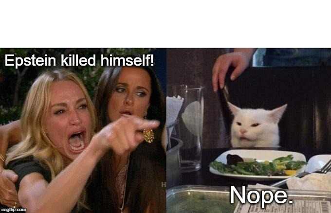 Epstein didn't kill himself |  Epstein killed himself! Nope. | image tagged in memes,big boobs,funny cats,jeffrey epstein,funny memes,woman yelling at cat | made w/ Imgflip meme maker
