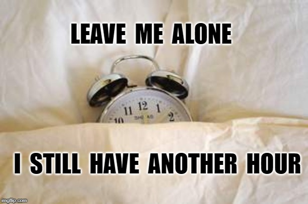 LEAVE  ME  ALONE I  STILL  HAVE  ANOTHER  HOUR | image tagged in daylight savings | made w/ Imgflip meme maker