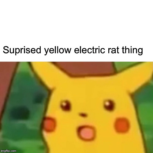 Surprised Pikachu | Suprised yellow electric rat thing | image tagged in memes,surprised pikachu | made w/ Imgflip meme maker