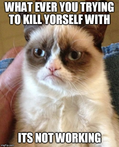 evil cat | WHAT EVER YOU TRYING TO KILL YORSELF WITH ITS NOT WORKING | image tagged in memes,grumpy cat,funny memes,mlg memes,mlg memes | made w/ Imgflip meme maker