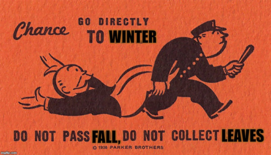 Monopoly | WINTER FALL, LEAVES | image tagged in monopoly | made w/ Imgflip meme maker