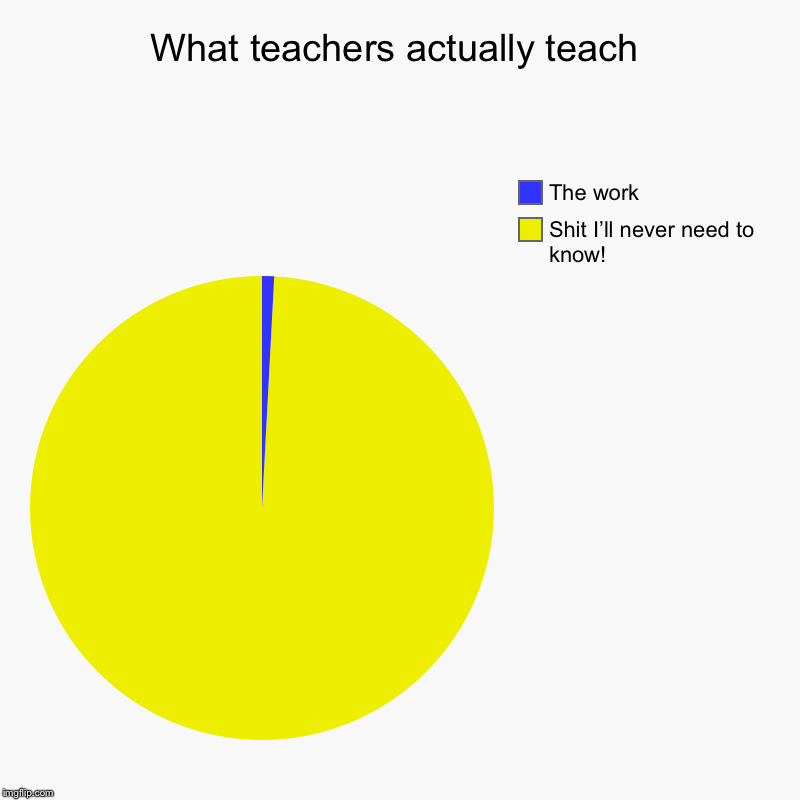 What teachers actually teach | Shit I'll never need to know!, The work | image tagged in charts,pie charts | made w/ Imgflip chart maker