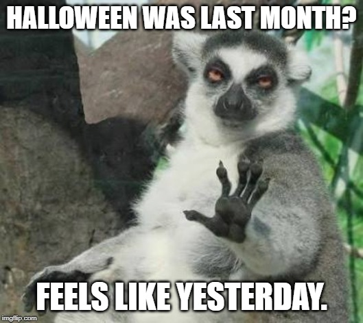 HALLOWEEN WAS LAST MONTH? FEELS LIKE YESTERDAY. | image tagged in no thanks lemur | made w/ Imgflip meme maker