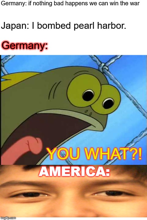 Why do I hear boss music? |  Germany: if nothing bad happens we can win the war; Japan: I bombed pearl harbor. Germany:; YOU WHAT?! AMERICA: | image tagged in you what,history,memes,funny,japan,world war 2 | made w/ Imgflip meme maker