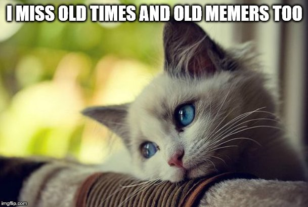 First World Problems Cat Meme | I MISS OLD TIMES AND OLD MEMERS TOO | image tagged in memes,first world problems cat | made w/ Imgflip meme maker