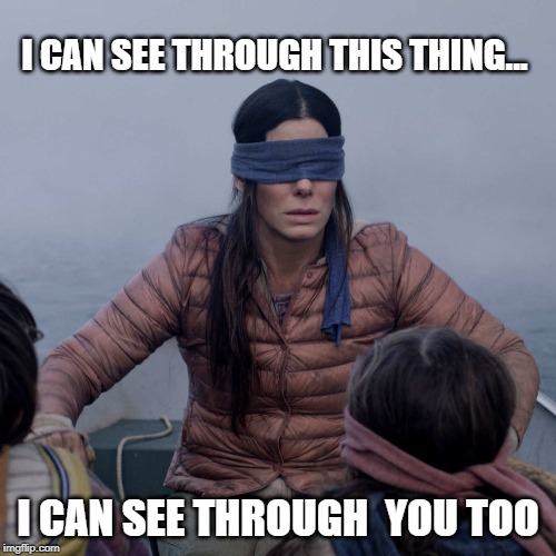 Shallow |  I CAN SEE THROUGH THIS THING... I CAN SEE THROUGH  YOU TOO | image tagged in bird box,blind fold,liars,sheer,see through,shallow | made w/ Imgflip meme maker