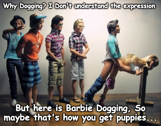 Barbie Dogging with friends... | Why Dogging? I Don't understand the expression But here is Barbie Dogging, So maybe that's how you get puppies... | made w/ Imgflip meme maker