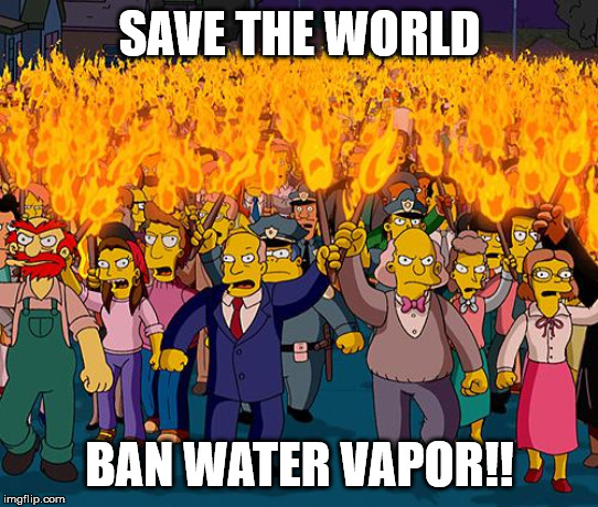 angry mob | SAVE THE WORLD BAN WATER VAPOR!! | image tagged in angry mob | made w/ Imgflip meme maker
