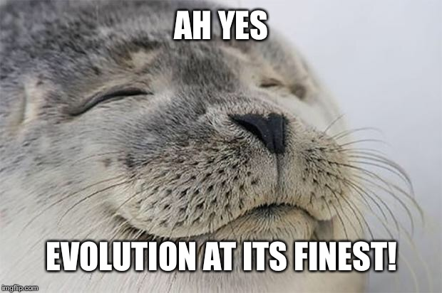 AH YES EVOLUTION AT ITS FINEST! | image tagged in memes,satisfied seal | made w/ Imgflip meme maker