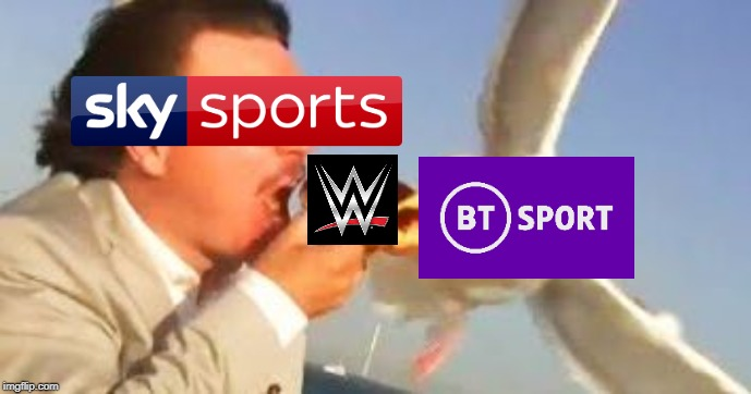 This will happen in January.... when our childhood dies | image tagged in swiping seagull,wwe,sky sports,bt sport,childhood ruined | made w/ Imgflip meme maker