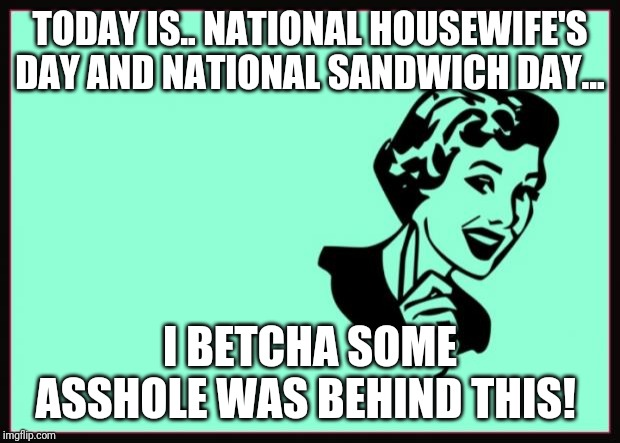 Ecard  | TODAY IS.. NATIONAL HOUSEWIFE'S DAY AND NATIONAL SANDWICH DAY... I BETCHA SOME ASSHOLE WAS BEHIND THIS! | image tagged in ecard | made w/ Imgflip meme maker
