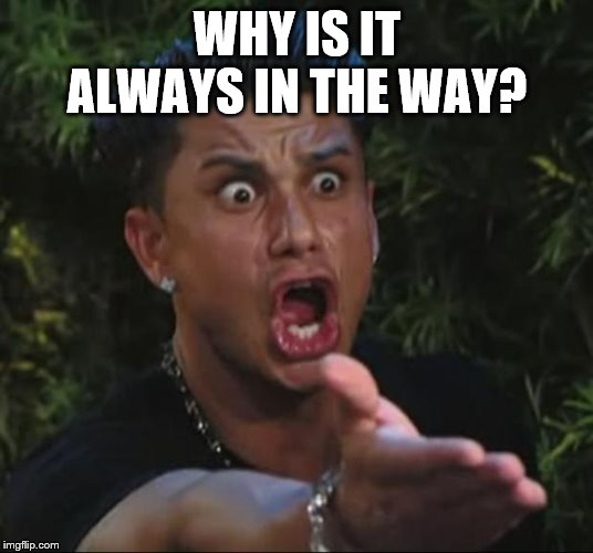 DJ Pauly D Meme | WHY IS IT ALWAYS IN THE WAY? | image tagged in memes,dj pauly d | made w/ Imgflip meme maker