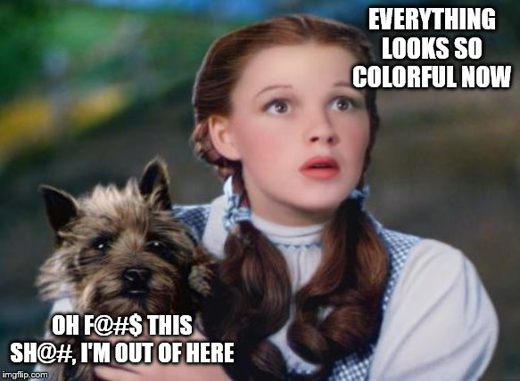 Toto Wizard of Oz | EVERYTHING LOOKS SO COLORFUL NOW OH F@#$ THIS SH@#, I'M OUT OF HERE | image tagged in toto wizard of oz | made w/ Imgflip meme maker