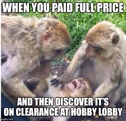 Shocked monkey | WHEN YOU PAID FULL PRICE AND THEN DISCOVER IT'S ON CLEARANCE AT HOBBY LOBBY | image tagged in shocked monkey | made w/ Imgflip meme maker