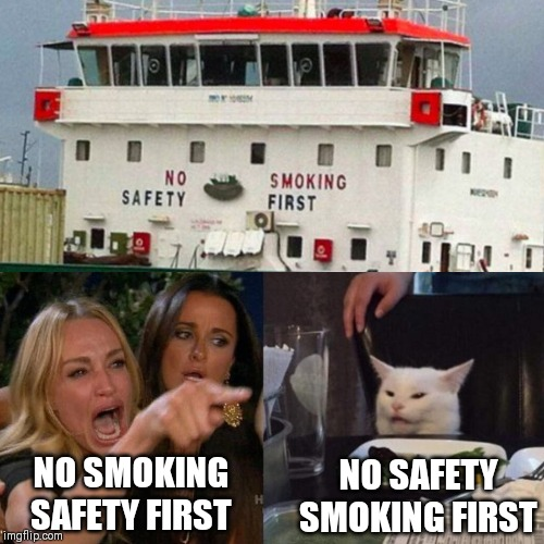 NO SMOKINGSAFETY FIRST NO SAFETYSMOKING FIRST | image tagged in cat,woman yelling at cat | made w/ Imgflip meme maker