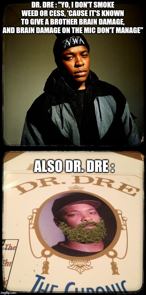 "Hip hop, flipflop. |  DR. DRE : ""YO, I DON'T SMOKE WEED OR CESS, 'CAUSE IT'S KNOWN TO GIVE A BROTHER BRAIN DAMAGE, AND BRAIN DAMAGE ON THE MIC DON'T MANAGE""; ALSO DR. DRE : 