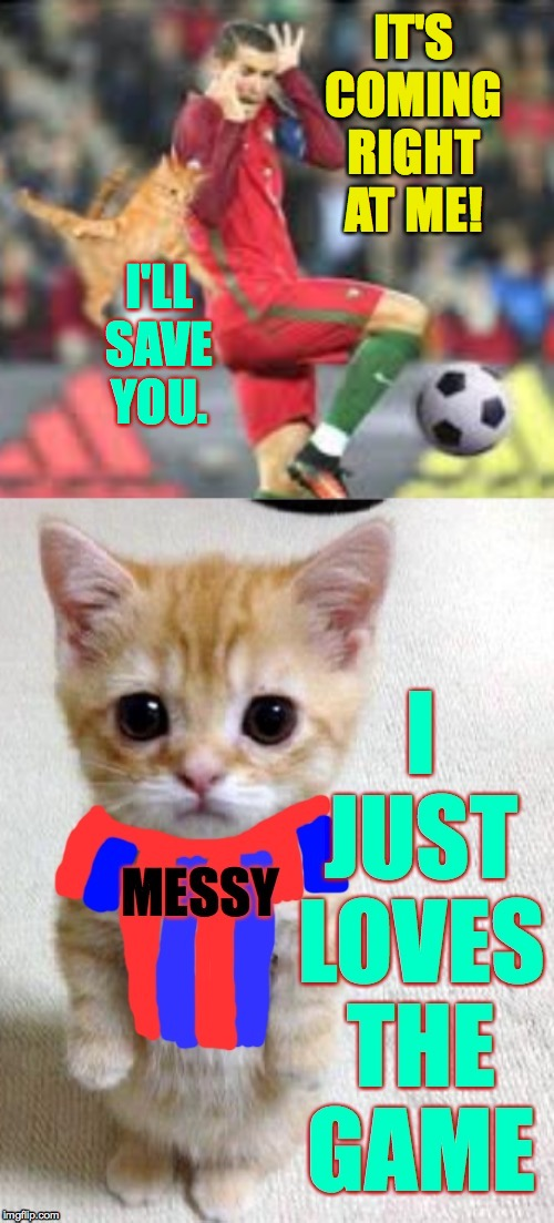'Cause that's what heroes do  ( : | IT'S COMING RIGHT AT ME! I'LL SAVE YOU. | image tagged in memes,messy cat,football,cause that's what heroes do | made w/ Imgflip meme maker