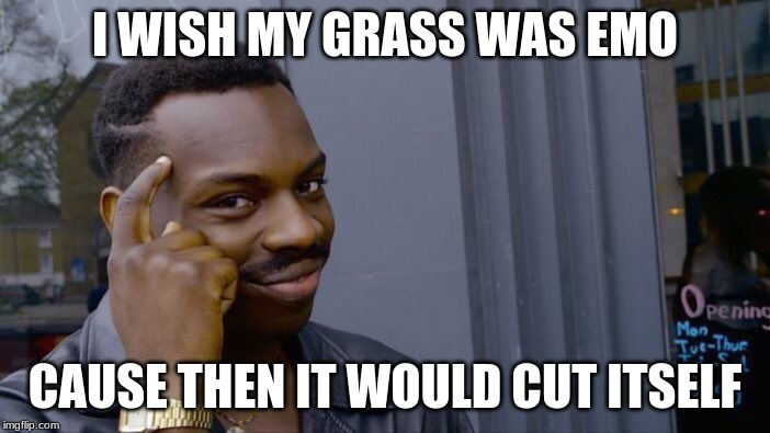 Roll Safe Think About It Meme | I WISH MY GRASS WAS EMO CAUSE THEN IT WOULD CUT ITSELF | image tagged in memes,roll safe think about it | made w/ Imgflip meme maker