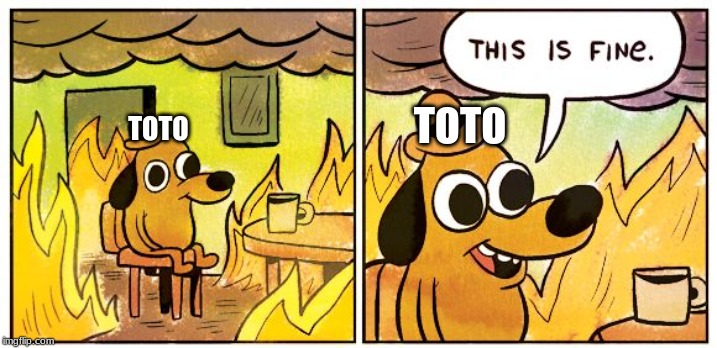This is fine dog | TOTO TOTO | image tagged in this is fine dog | made w/ Imgflip meme maker
