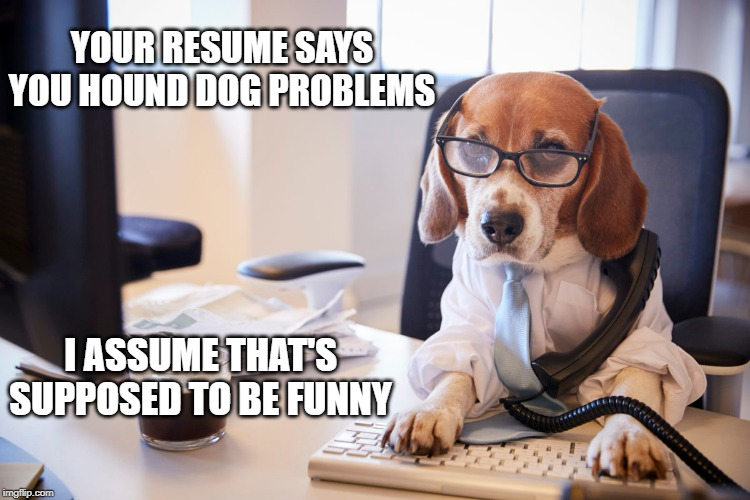 Beagle Boss |  YOUR RESUME SAYS YOU HOUND DOG PROBLEMS; I ASSUME THAT'S SUPPOSED TO BE FUNNY | image tagged in boss,beagle | made w/ Imgflip meme maker