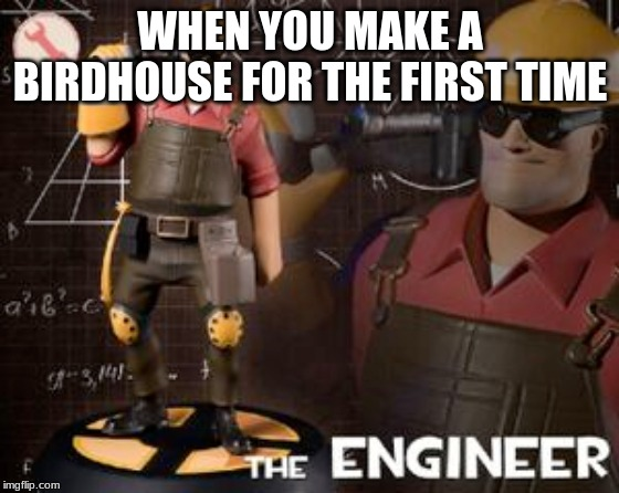 The Engineer |  WHEN YOU MAKE A BIRDHOUSE FOR THE FIRST TIME | image tagged in memes,funny,tf2 | made w/ Imgflip meme maker