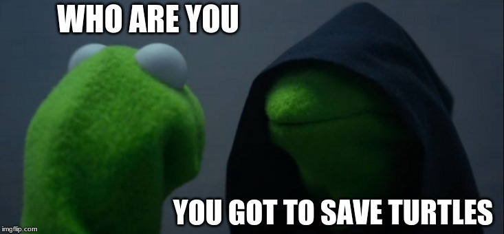 Evil Kermit Meme | WHO ARE YOU YOU GOT TO SAVE TURTLES | image tagged in memes,evil kermit | made w/ Imgflip meme maker