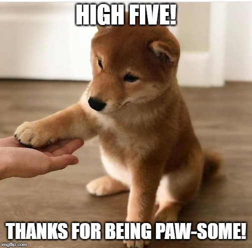 Paw-some doge |  HIGH FIVE! THANKS FOR BEING PAW-SOME! | image tagged in dog,doge,high five,doggo,shiba inu | made w/ Imgflip meme maker