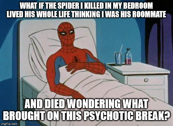 Just Thinking | WHAT IF THE SPIDER I KILLED IN MY BEDROOM LIVED HIS WHOLE LIFE THINKING I WAS HIS ROOMMATE AND DIED WONDERING WHAT BROUGHT ON THIS PSYCHOTIC | image tagged in memes,spiderman hospital,spiderman,shower thoughts,funny,fun | made w/ Imgflip meme maker