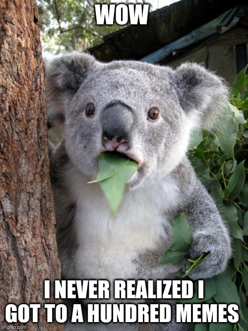Surprised Koala Meme | WOW I NEVER REALIZED I GOT TO A HUNDRED MEMES | image tagged in memes,surprised koala | made w/ Imgflip meme maker