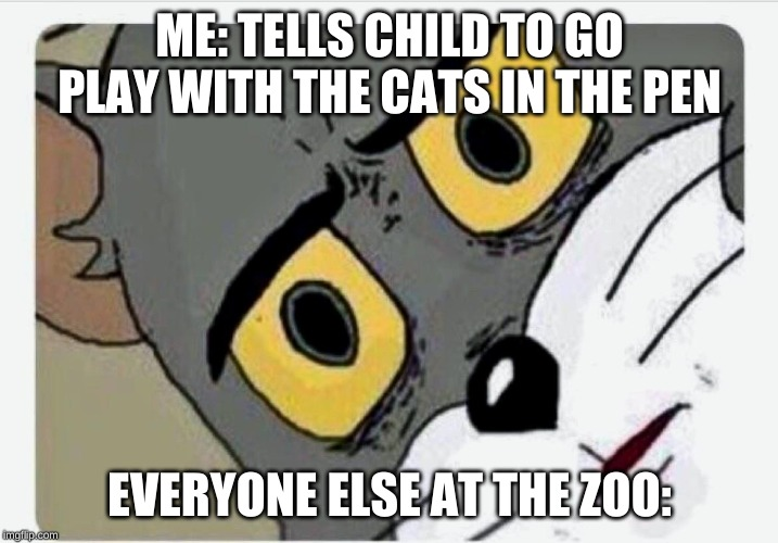 Disturbed Tom | ME: TELLS CHILD TO GO PLAY WITH THE CATS IN THE PEN EVERYONE ELSE AT THE ZOO: | image tagged in disturbed tom | made w/ Imgflip meme maker