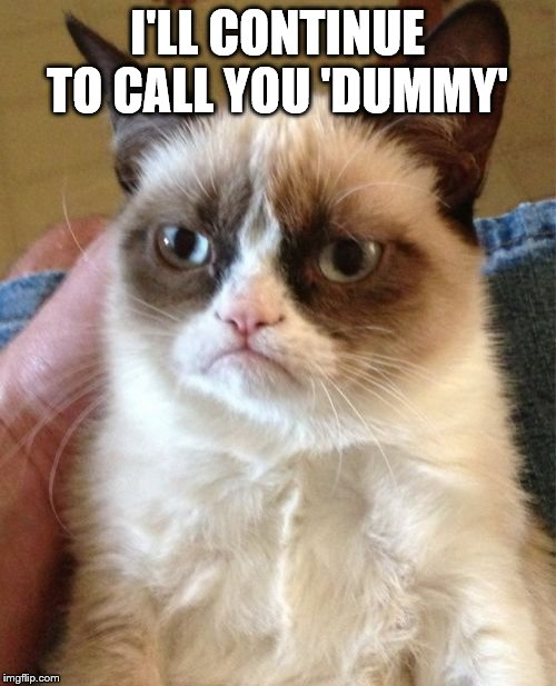 Grumpy Cat Meme | I'LL CONTINUE TO CALL YOU 'DUMMY' | image tagged in memes,grumpy cat | made w/ Imgflip meme maker