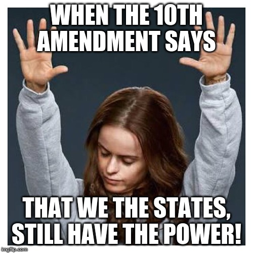 Praise the lord | WHEN THE 10TH AMENDMENT SAYS THAT WE THE STATES, STILL HAVE THE POWER! | image tagged in praise the lord | made w/ Imgflip meme maker