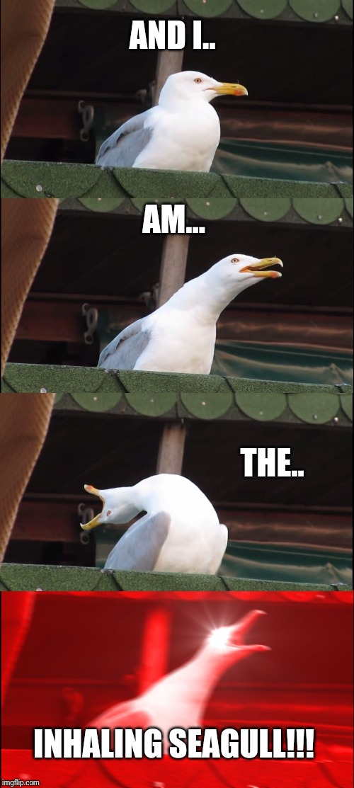 Inhaling Seagull Meme | AND I.. AM... THE.. INHALING SEAGULL!!! | image tagged in memes,inhaling seagull | made w/ Imgflip meme maker